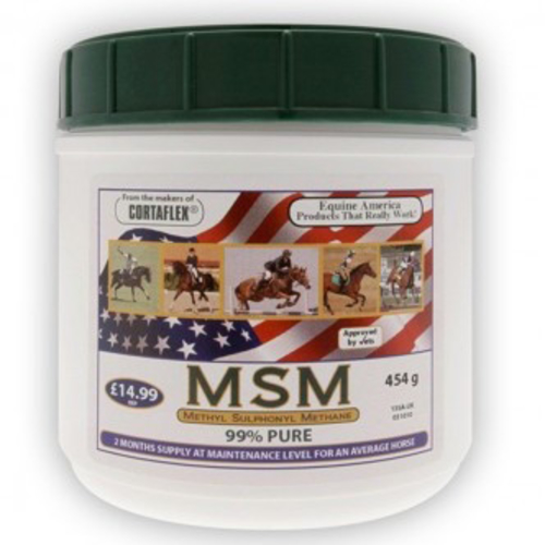 Equine America MSM for Horses 454g