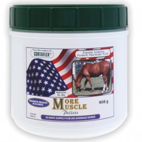 Equine America More Muscle 908g