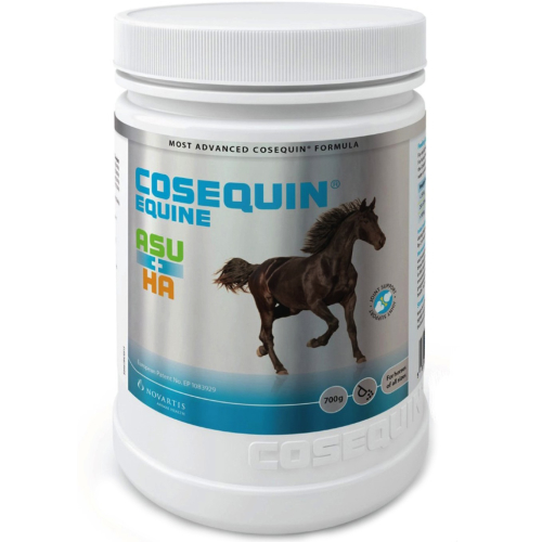 Cosequin Joint Supplement 700g