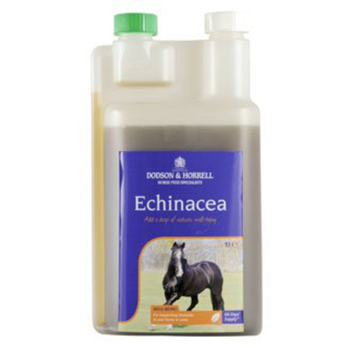 Dodson & Horrell Echinacea Supplement Liquid 1L