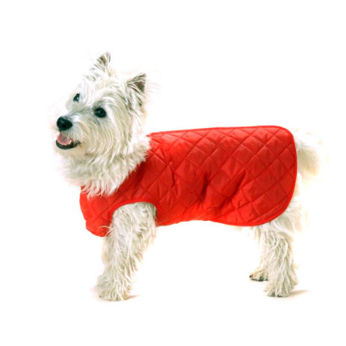Cosipet Step In Suit Quilted Dog Coat Red 30cm / 12""