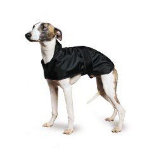 Ancol Muddy Paws Whippet Black Dog Coat 43cm
