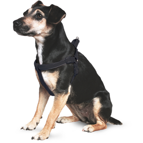 Ancol Nylon Padded Dog Harness Black Extra Large 67 - 116cm