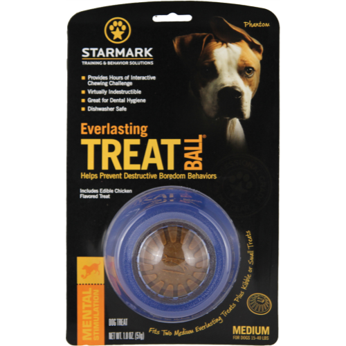 Starmark Everlasting Treat Ball Dog Toy Medium