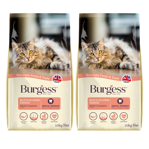 Burgess Complete Scottish Salmon Adult Cat Food 10kg x 2