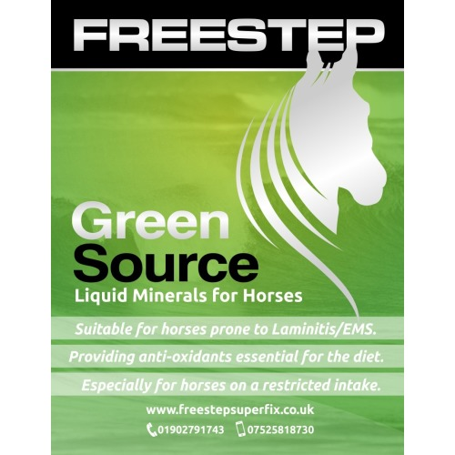 Freestep Superfix Green Source 1 Litre