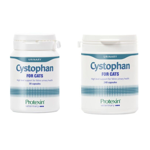 Protexin Cystophan Capsules for Cats x 240