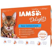 IAMS Delights Adult – Sea Collection - Sea Collection in Gravy (12 x 85g)
