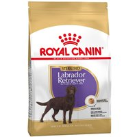 Royal Canin Sterilised Labrador Retriever Adult - 12kg