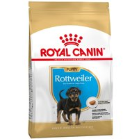 Royal Canin Rottweiler Puppy - 12kg