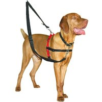 Halti Dog Training Harness - Size L