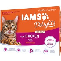 IAMS Delights Senior – Chicken in Gravy - Chicken in Gravy (12 x 85g)