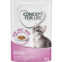 Concept for Life Kitten - in Jelly - 12 x 85g