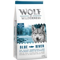 "Wolf of Wilderness Economy Pack 2 x 12kg - Adult ""Blue River"" - Salmon"