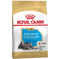 Royal Canin Miniature Schnauzer Puppy - 1.5kg
