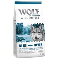 "Wolf of Wilderness Adult ""Blue River"" - Salmon - 12kg"