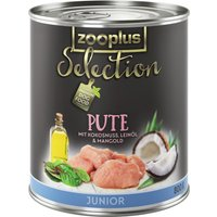 zooplus Selection Junior Turkey - 6 x 800g