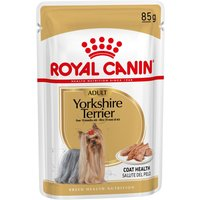 Royal Canin Breed Wet Yorkshire Terrier - 12 x 85g