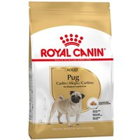 Royal Canin Pug Adult - 3kg
