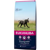 Eukanuba Growing Puppy Large Breed - Chicken - 15kg