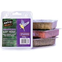 Mealworm Suet Blocks Extra Select