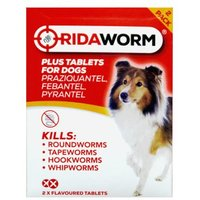 Ridaworm Plus 2 Tablets For Dogs