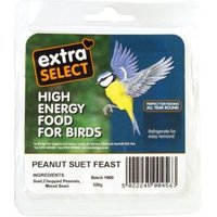 Extra Select Suet Block Peanut