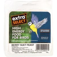 Extra Select Suet Block - Berry