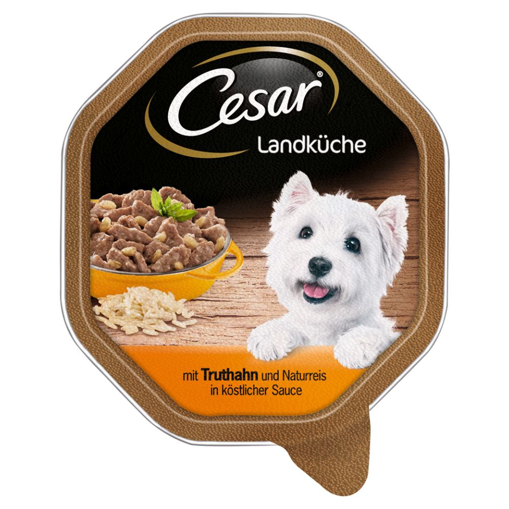 Cesar Country Kitchen in Gravy Trays 14 x 150g - Beef & Turkey