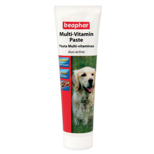 Beaphar Dog Multi Vitamin Paste 100g