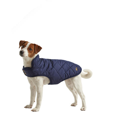 Joules Navy Quilted Dog Coat